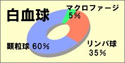 illust3-1